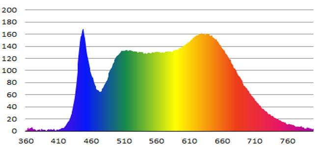 FKK_LED_Color
